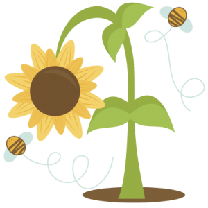 Sunflower SVG scrapbook cut file cute clipart files for silhouette cricut pazzles free svgs free svg cuts cute cut files