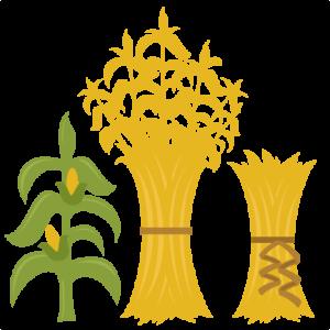 Corn Stalks SVG cutting files for scrapbooking fall svg cut files for cricut cute cut files free svg cuts