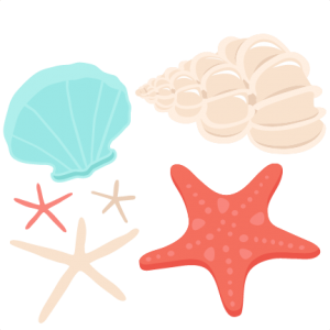 Seashell Set SVG scrapbook cut file cute clipart files for silhouette cricut pazzles free svgs free svg cuts cute cut files