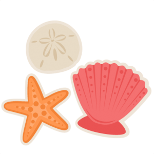 Seashells SVG scrapbook cut file cute clipart files for silhouette cricut pazzles free svgs free svg cuts cute cut files