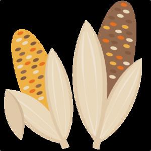 Indian Corn Fall SVG scrapbook cut file cute clipart files for silhouette cricut pazzles free svgs free svg cuts cute cut files