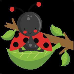 Ladybug on Leaf SVG scrapbook cut file cute clipart files ...
