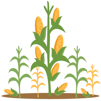 Corn Stalks SVG scrapbook cut file cute clipart files for ...