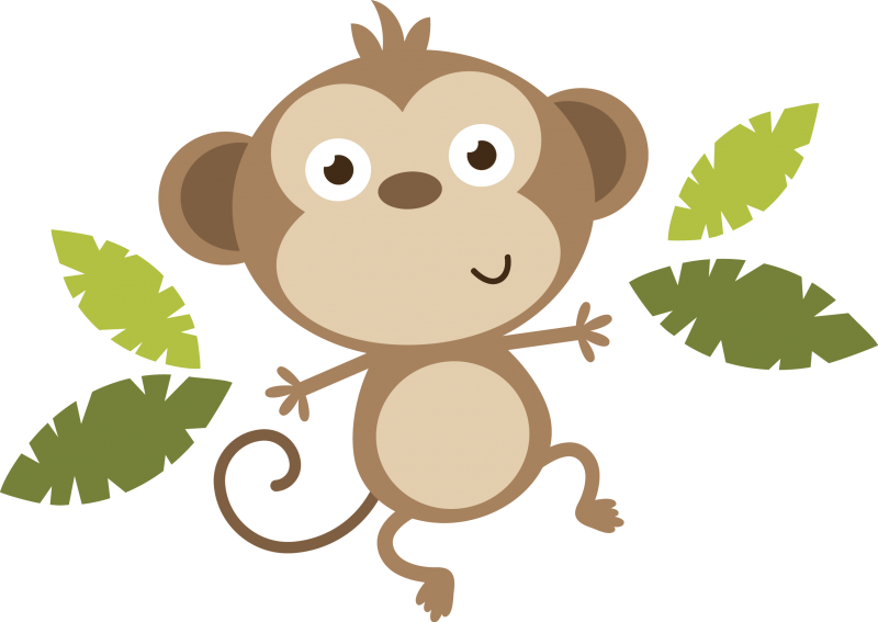 how to add pictures on survey monkey questions