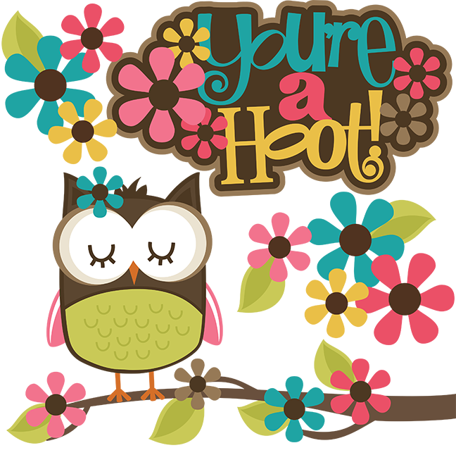 You Re A Hoot Svg Scrapbook Collection Owl Svg File Cute