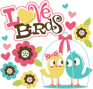Love Birds SVG Scrapbook Collection valentines day svg files for scrapbooking cardmaking