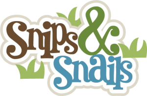 Snips & Snails SVG scrapbook title boy svg files boy svg cuts for scrapbooking cardmaking free svgs