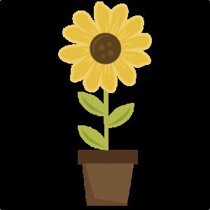 Sunflower In Pot SVG scrapbook title sunflower svg file sun svg file svute svg cuts free svgs