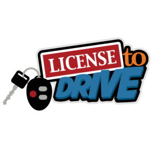 License To Drive SVG scrapbook title driver license svg file learning to drive svg cut file