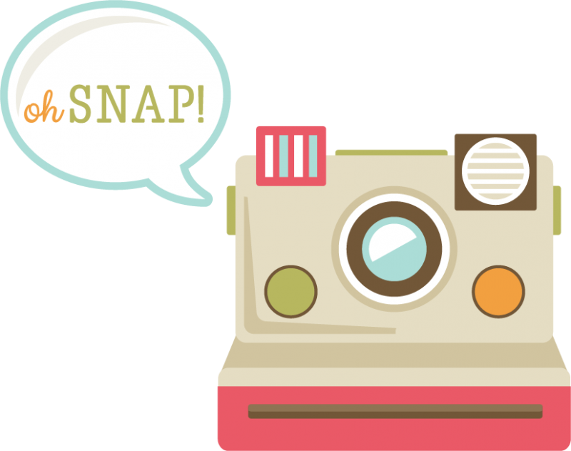 oh snap  svg cut file for scrapbooking camera svg file otter clipart cute otter clipart outline