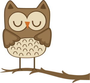 Boy Owl SVG cut files for scrapbooking owl svg file owl svg cut file free svgs free svg cuts