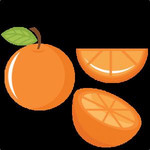 Orange Set SVG cutting files fruit svg cut file food svgs cute svg cut files for cricut cute cut files free svgs