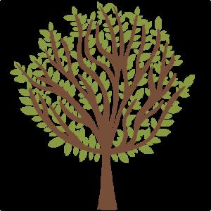 Tree  SVG scrapbook cuts tree svg cut file tree svg cut files for cricut cute svgs free free svgs